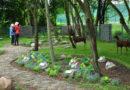 Piknik ekologiczny w zielonym sercu miasta – cóż to było za popołudnie!
